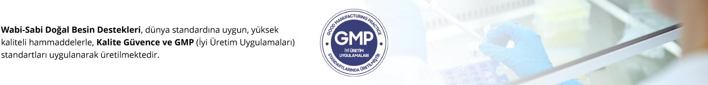 GMP Banner